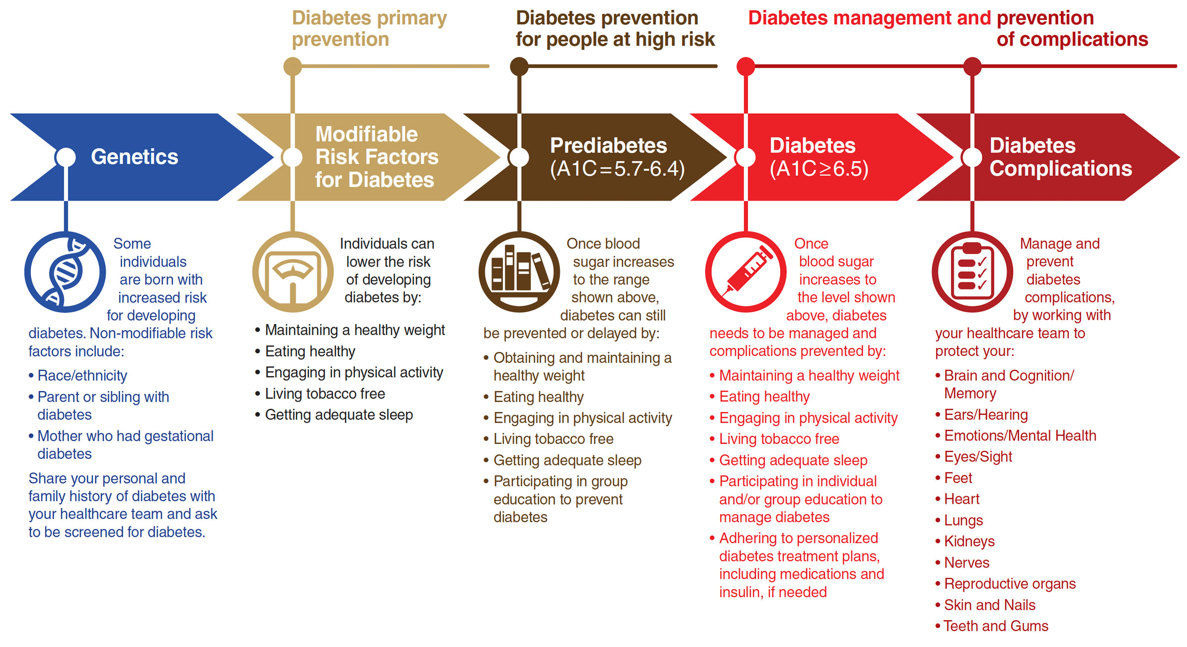 Diabetes Guide graphic large
